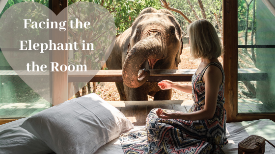 the elephant in the room - a woman on her bed and connecting with an elephant