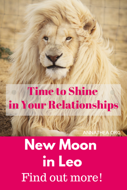 New Moon in Leo 2019 with a picture of a Lion