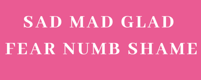 How to Process Emotions - Banner categorizing feelings into SAD MAD GLAD FEAR NUMBER SHAME